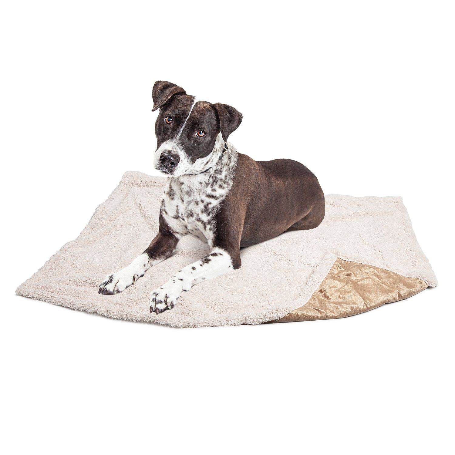 Puppy BlanketSuper Soft Sherpa Dog Blankets and Throws Cat