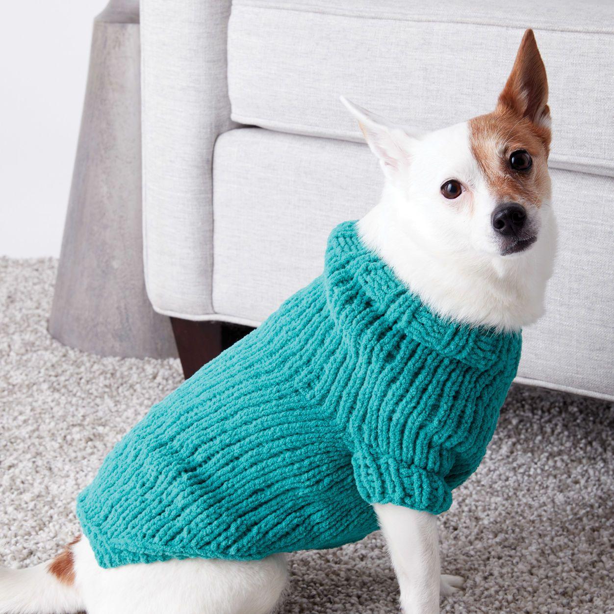 Bernat Knit Dog Coat, S Pattern   Yarnspirations   Knitted ...