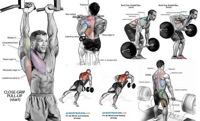 Best Upper Back Workout | Gym workout chart | Pinterest ...