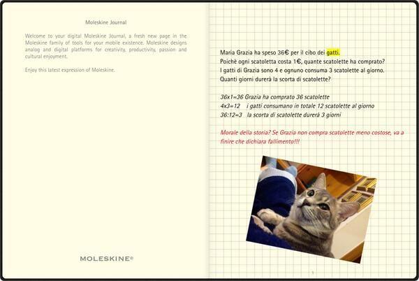Twitter/Grazia_Gau. Created in Moleskine Journal.