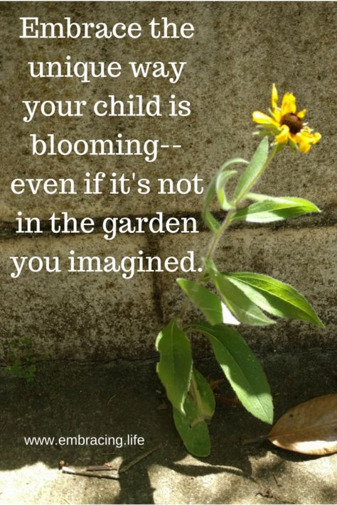 Blooming In The Special Needs Parenting Journey Being A Mom