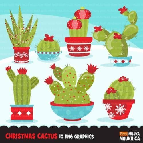 Buy Now Christmas Cactus clipart. Cute cactus flowering dessert…