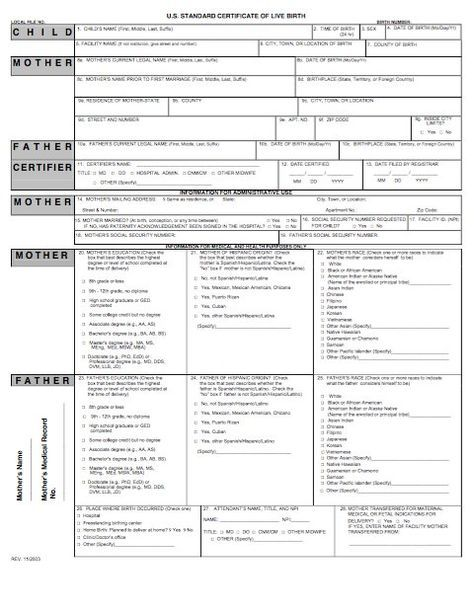 15 Birth Certificate Templates (Word  PDF) - Template Lab 4201
