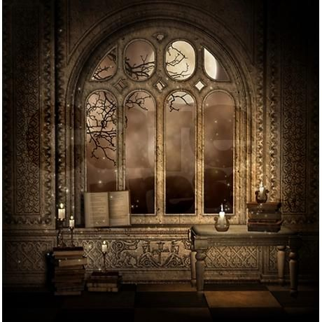Gothic Library Window Shower Curtain - Gothic Library Window Shower Curtain Gothic