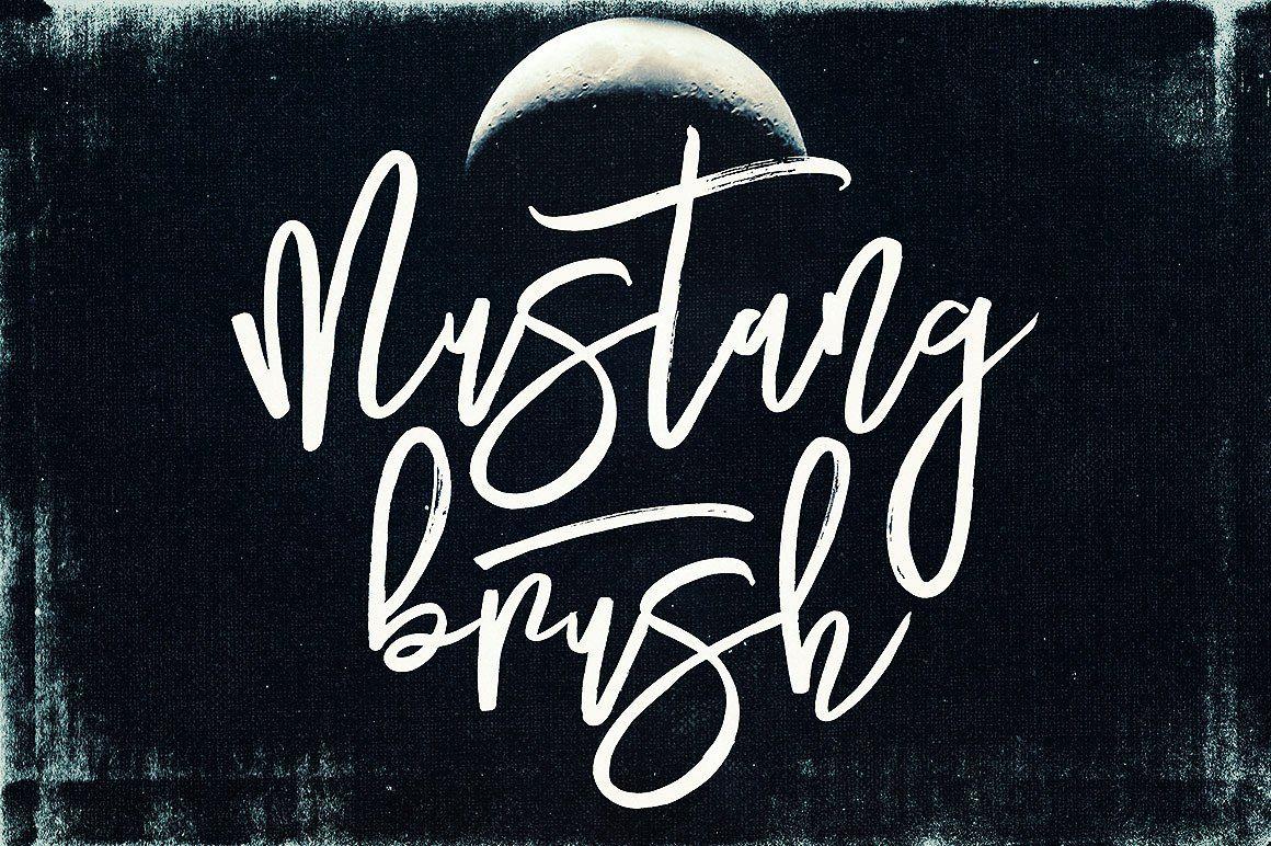 Mustang Brush Font Brush Font Graphic Design Resources Brush