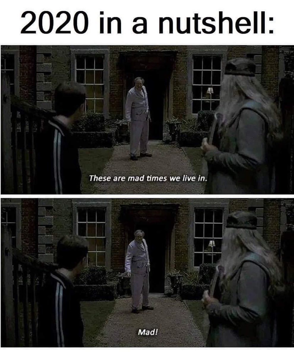 23 6k Likes 42 Comments Harry Potter Fan Page Wizardpost S On Instagram Can Anyone R Harry Potter Jokes Harry Potter Memes Hilarious Harry Potter Funny