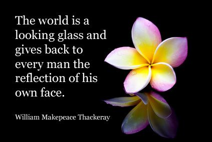Plumeria Flowers With Quote By William Thackeray Flowers And