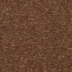 Black Cherry Plush Carpet Carpet Mohawk Carpet