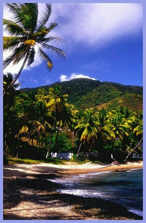 Caribbean Family History - Resident