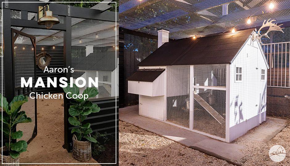The Mansion™ Coop Walk in chicken coop, Chicken coop