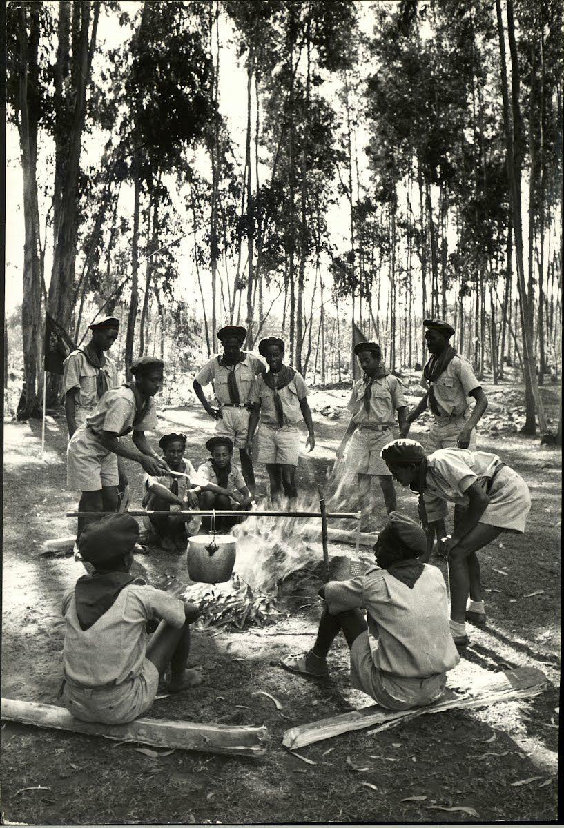 Essays on australias involvement in the vietnam war