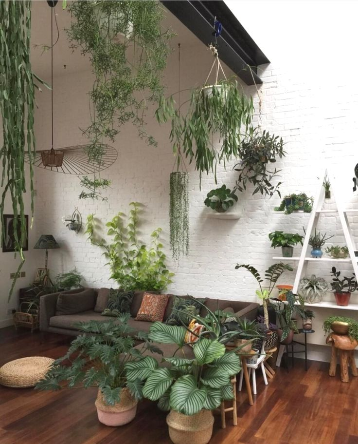 27 Interior Design Plants Inside House Pictures Interior Design Plants Plant Decor Living Room Plants