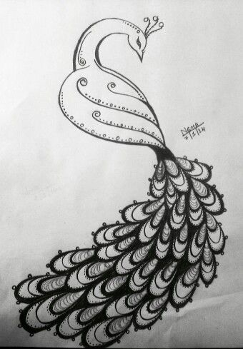 Peacock Sketch With Images Peacock Sketch Peacock Drawing