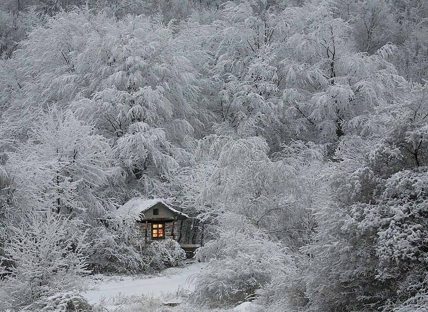 Даже когда на улице холодно: зима, снег, ностальгия по теплу ; то и в это время года можно найти много красивого. Ведь каждоевремя года прекрасно по своему ... И так ЗИМА ... Хочу вам показать зимние пейзажи и вместе с вами насладиться этой красотой природы ... &hel…
