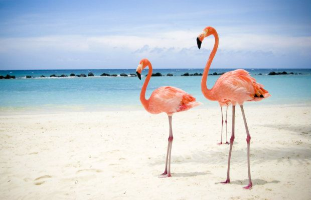 5 playas vírgenes mexicanas que no te puedes perder