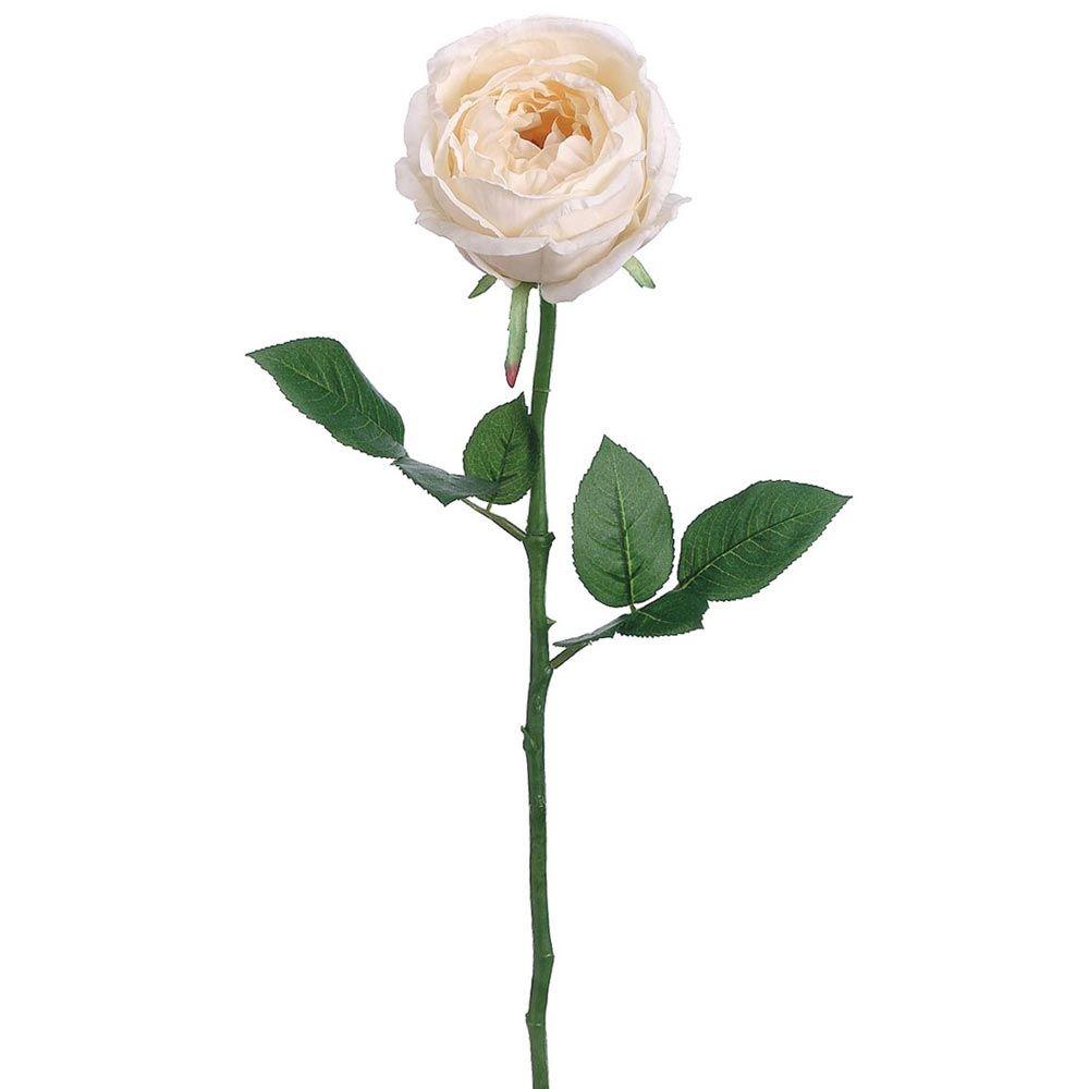 Silk garden cabbage rose stem in cream425 cabbage and weddings cream cabbage rose cheap wedding flowers afloral izmirmasajfo Choice Image