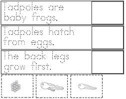 free worksheets life cycle of a chicken - Google Search | Projects ...