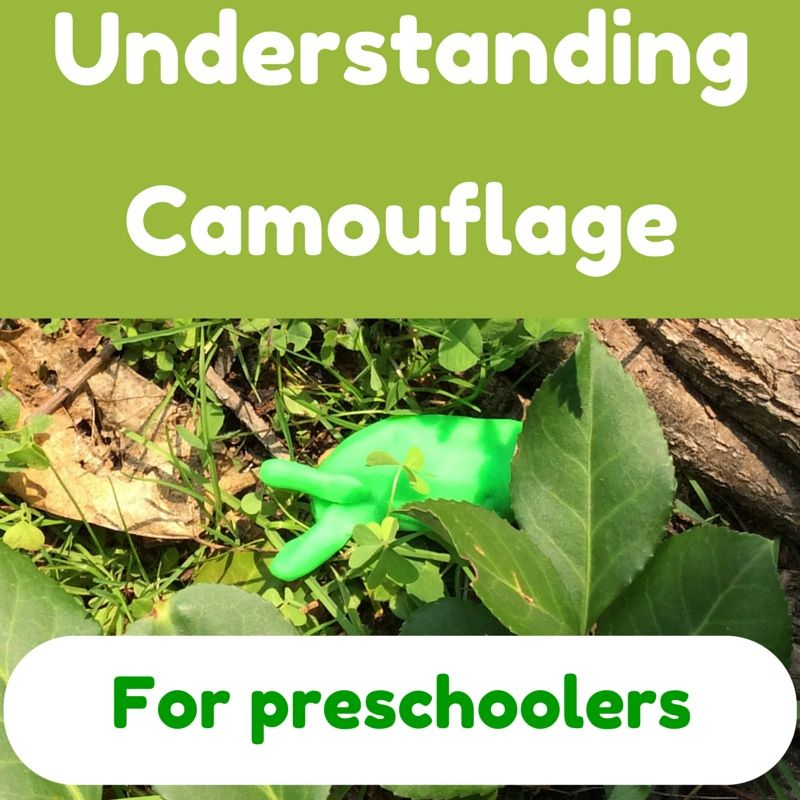 easy and fun preschool art steam activity for learning about camouflage nature center. Black Bedroom Furniture Sets. Home Design Ideas