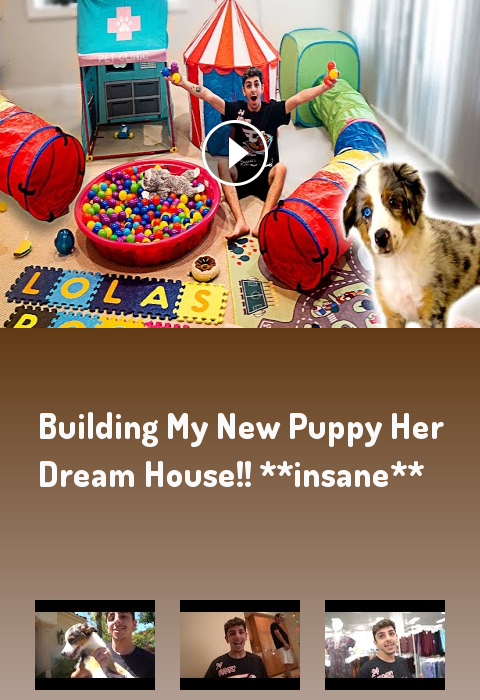 BUILDING MY NEW PUPPY HER DREAM HOUSE!! insane #lifestyle #fitness #gym #motivation faze rug rug rug...
