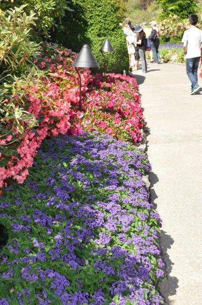 Butchart Gardens; The Sunken Gardens #butchartgardens
