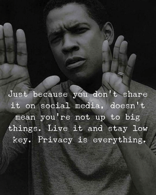 Just Because You Don't Share It on Sociall Media Doesn't Mean You're Not Up to Big Things Live It and Stay Low Key Privacy Is Everything | Low Key Meme on loveforquotes.com