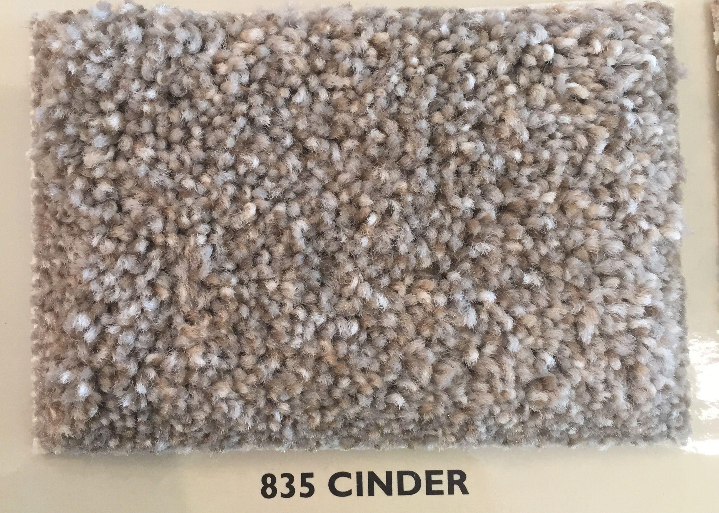 Master Bedroom Carpet Dwellings Dw312 Kensington 835 Cinder How To Dry Basil Bedroom Carpet Cinder