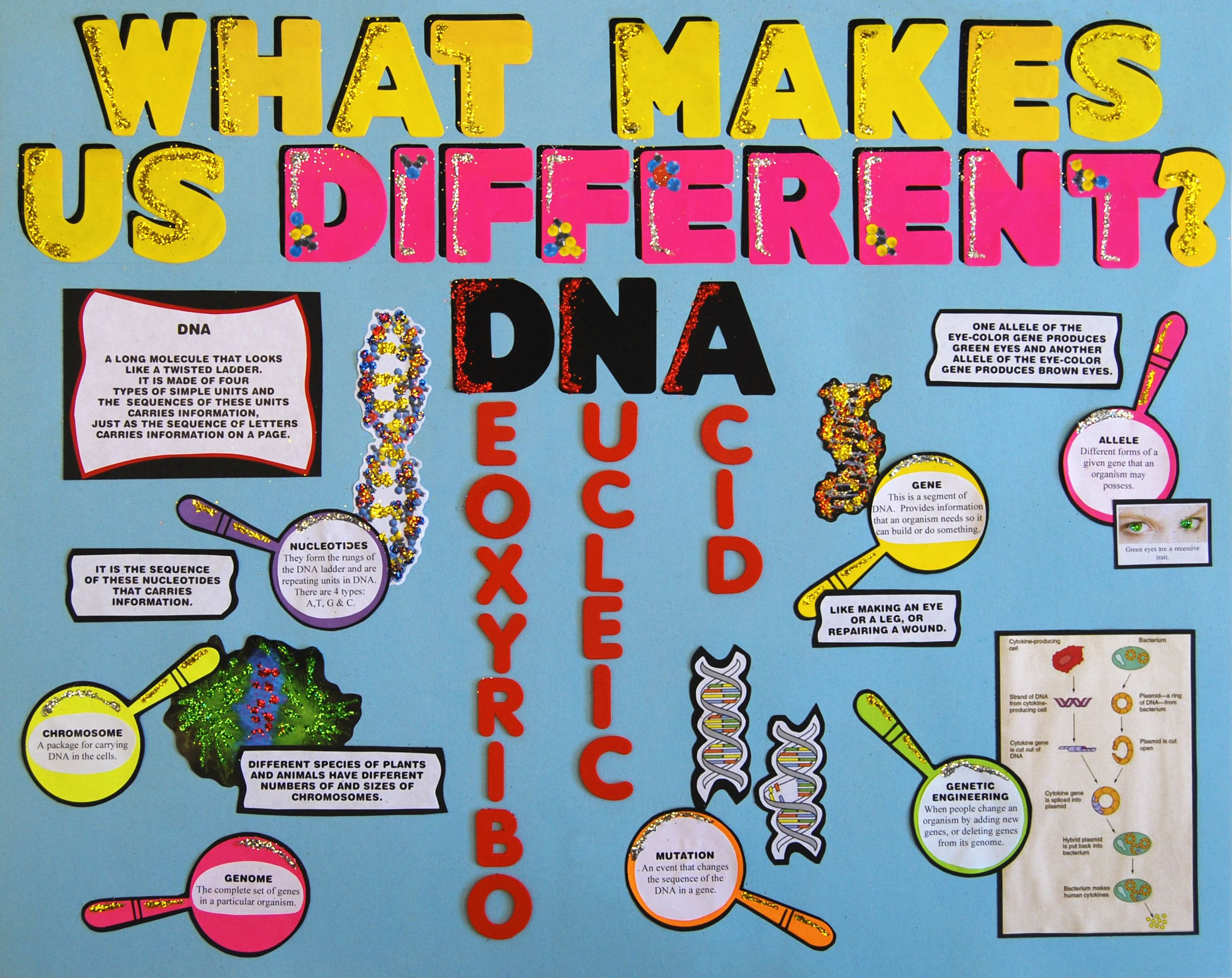 Science Fair Poster Dna