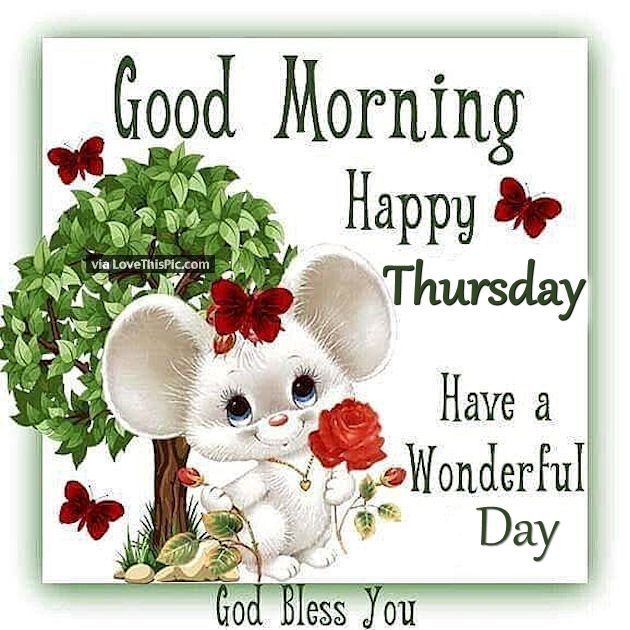 Good morning happy thursday have a wonderful day greeting cards good morning happy thursday have a wonderful day monday morning wishes good morning happy thursday m4hsunfo