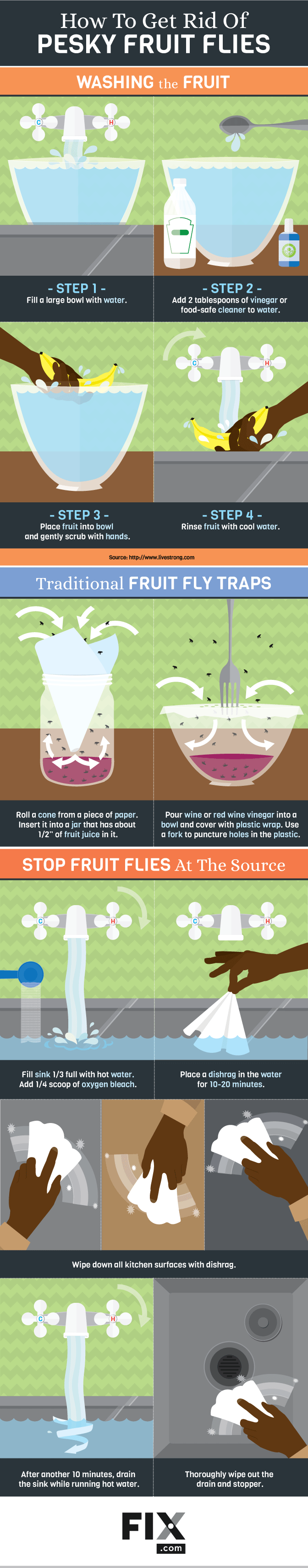 How to really get rid of pesky fruit flies body paint pinterest