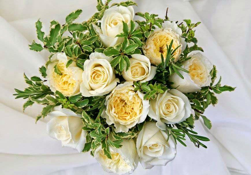 صور زهور وباقات ورد جميلة أجمل ورود الحب ميكساتك Flowers Photos Wallpaper Flower Decorations Orchid Flower