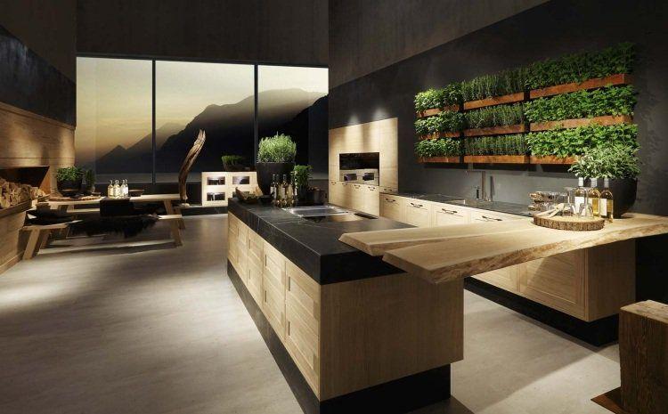 Cuisines design- mariage de modernité et simplicité naturelle ...
