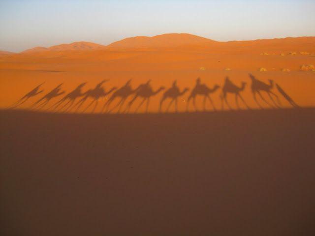 Desert walk, Morocco
