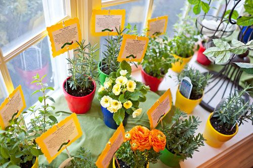 Eric Carle hungry caterpillar baby shower potted herbs and flowers