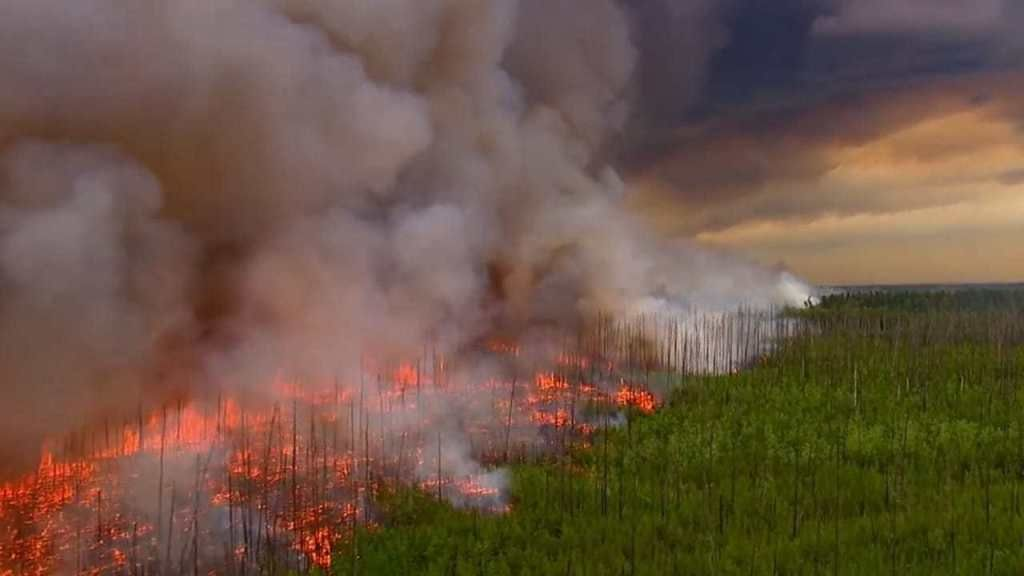 Amazon Forest Fire Brazil Deadly Impact On Climate Change