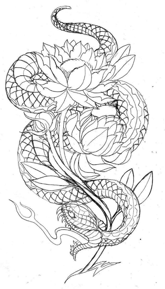 эскиз змеи с цветами хотелки тату кобры татуировки и идеи для