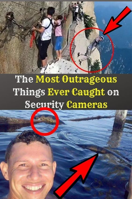 The Most Outrageous Things Ever Caught on Security Cameras Most Ever on