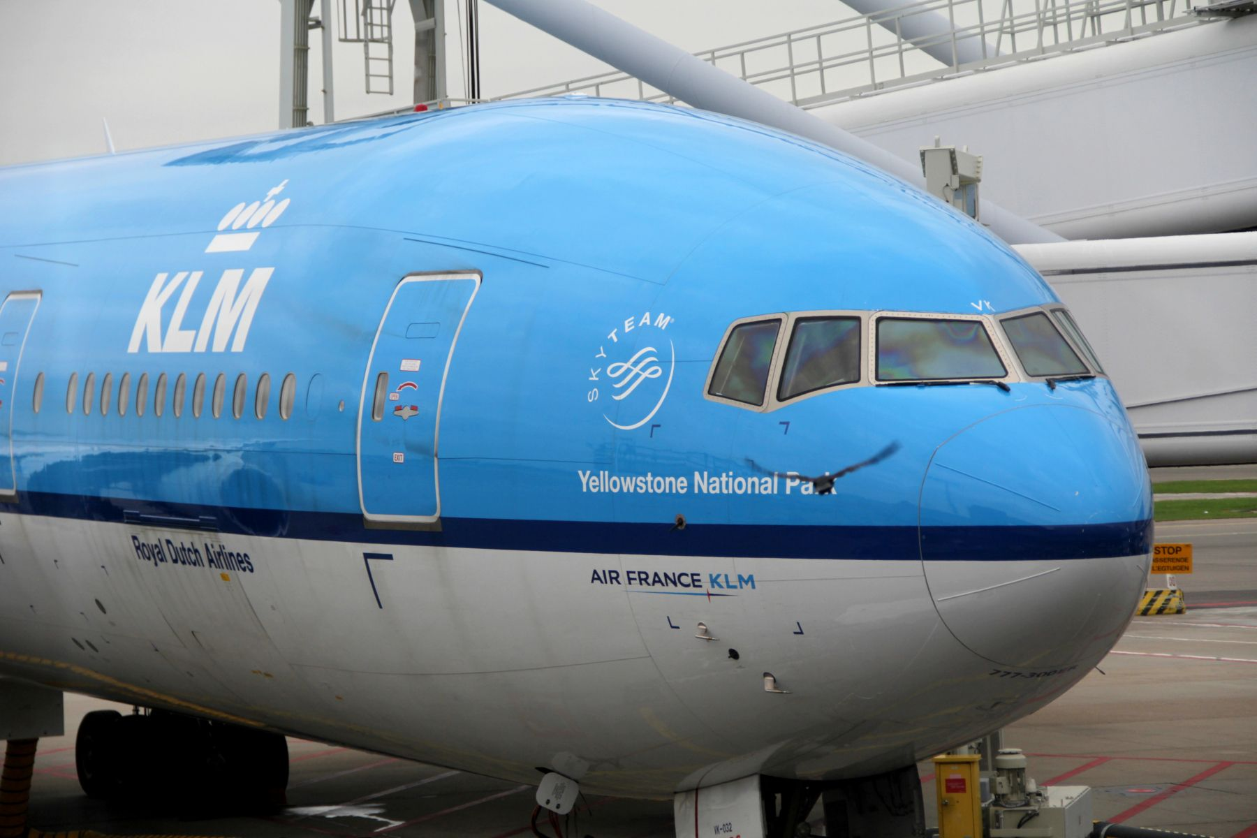 Airline Review KLM (long haul) Airline reviews, Airline