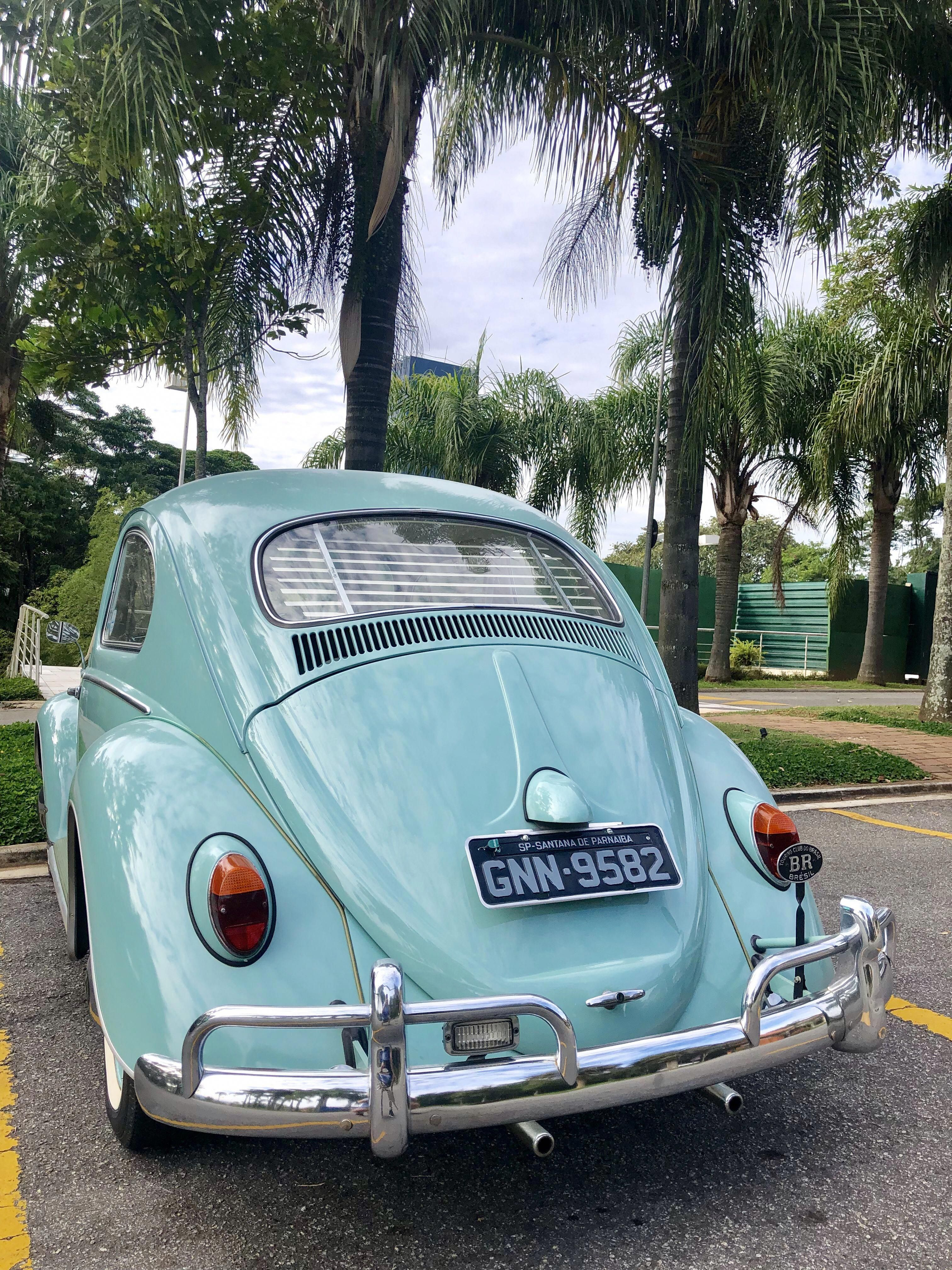 Beetle Volkswagonclassiccars Volkswagen Classiccars Carrosantigos Classic Cars Volkswagen Classic Cars Muscle