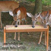 hurley byrd premium deer feeders add class beauty and elegance to rh pinterest com