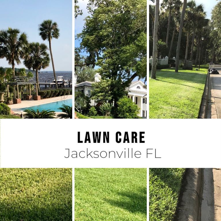 Searching for lawn care Jacksonville FL? Do this instead