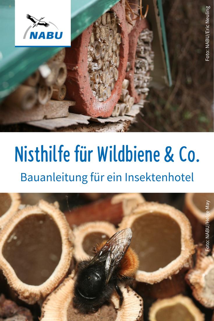 Photo of Bauanleitung für ein Insektenhotel