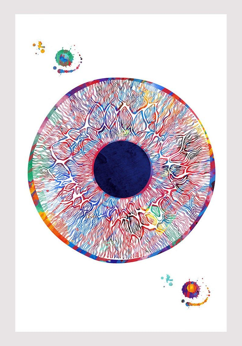 Eye Anatomy Art Watercolor Human Iris and Pupil Structure ...