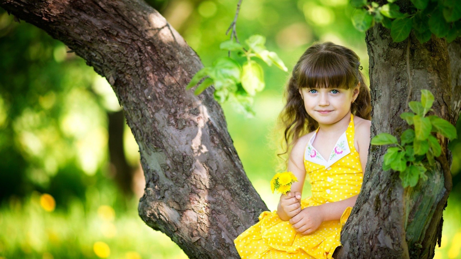 Amazing Pretty Cute Girl Hd Wallpaper For Wallpaper Windows 8 With