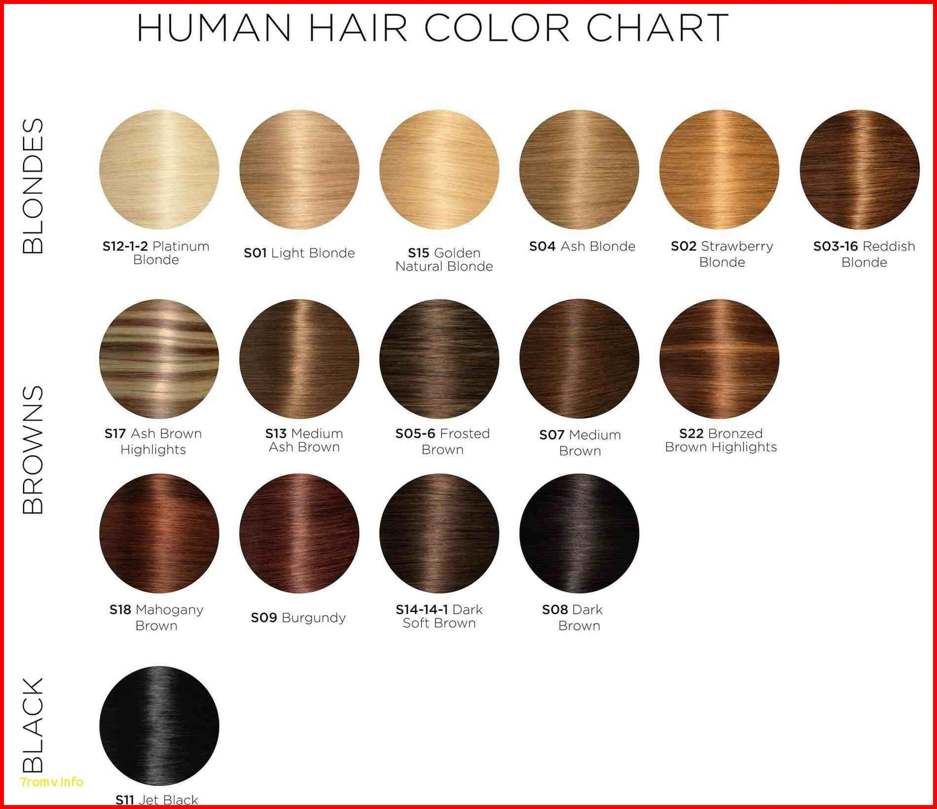 Majirel Hair Color Chart 149415 Hair Colour Chart Loreal Majirel