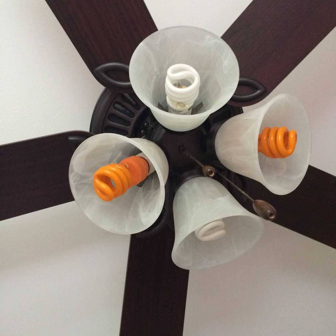 This is a ease craft that looks cool in any room Just change your lights into any colors you want