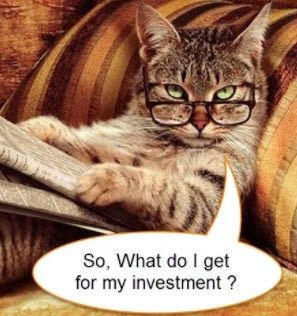 Rsi Envelope Trader Automated Mt4 Indicators Funny Animal