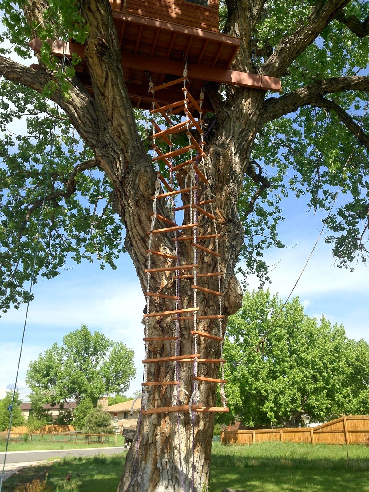 Treehouse Rope Ladder 4 Sided Tree House Tree House Designs