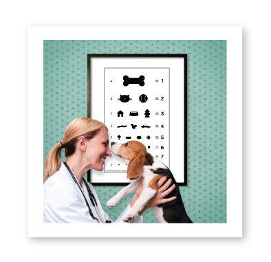 For my future vet clinic lol Pet clinic, Vet clinics