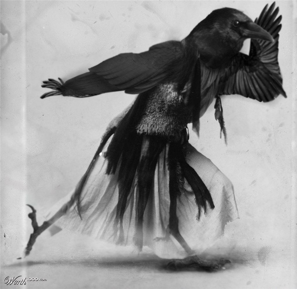 Ravenious Boogy