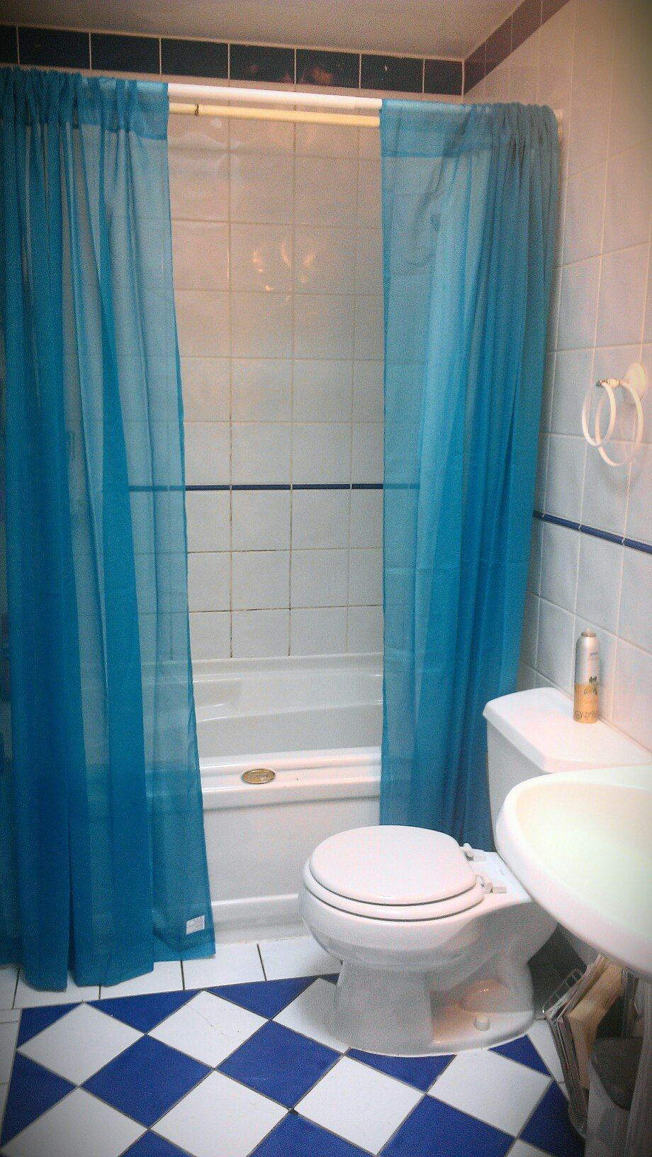 Taking a tip from Pinterest for small bathrooms: Instead of a shower ...